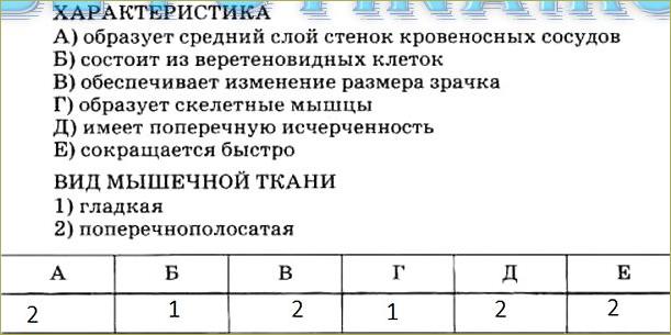 Тренировочные задания - 2