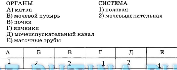 Тренировочные задания - 4