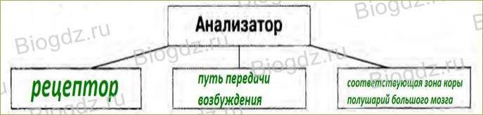 Анализаторы - 1