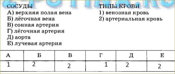 Тренировочные задания - 3